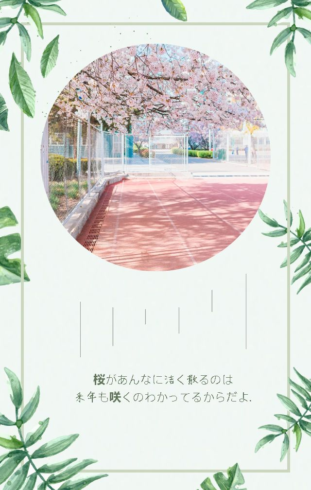 小清新/日系/青春/旅行/毕业相册/旅拍/摄影作品集/表白/情侣/森系