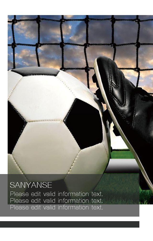 高端体育器材用品比赛活动宣传画册