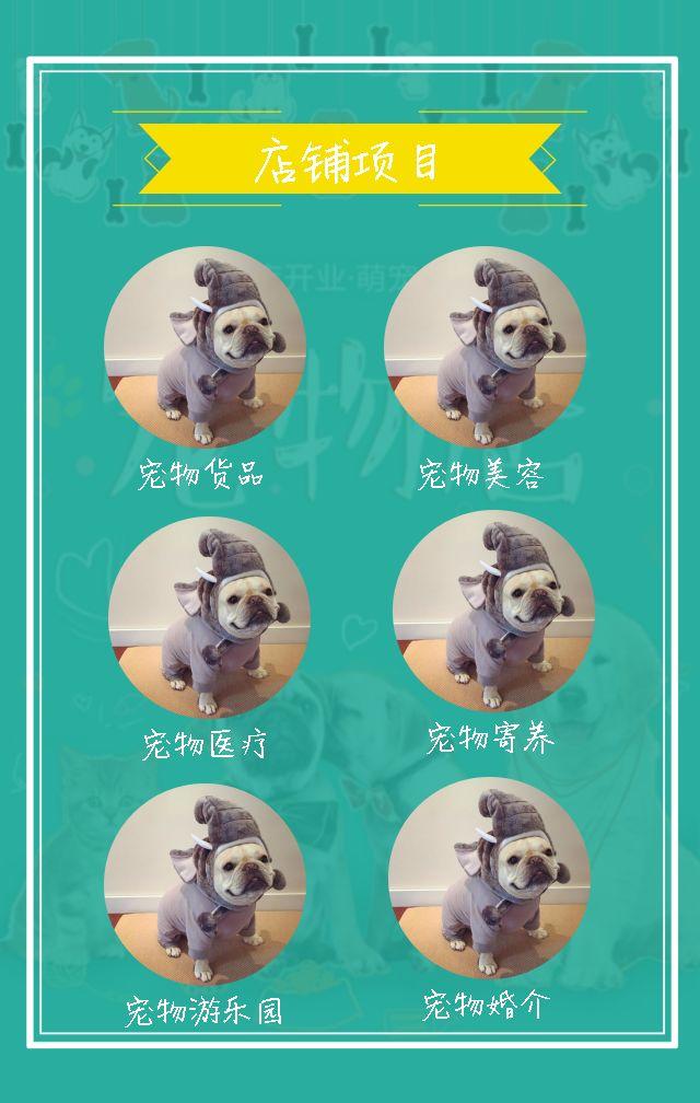 宠物店铺介绍 宠物医院宣传 新店开业 清新宠物店 开业活动 优惠活动 开业促销  宠物医院 宠物店店