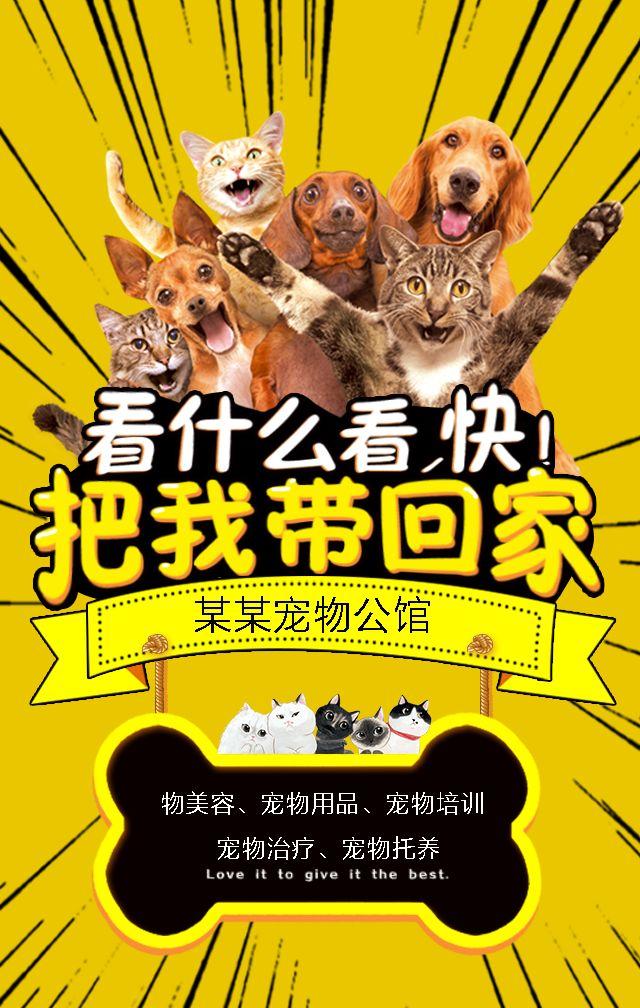 创意,可爱,宠物店,开张,新店开业,新品,促销,猫,,狗,