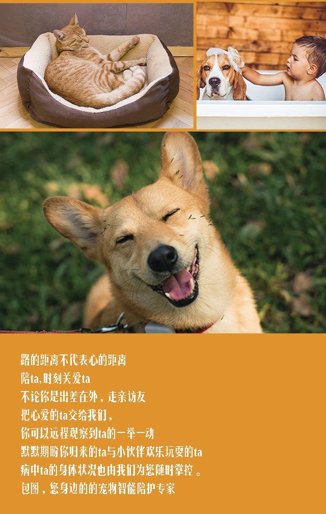 萌宠之家/宠物服务宣传
