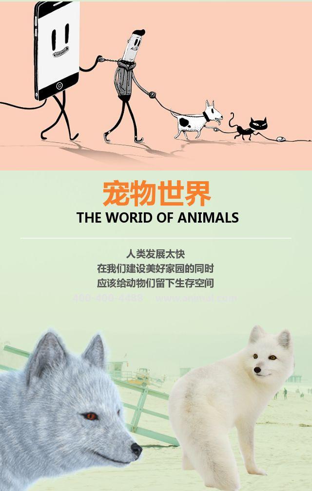 宠物世界之——猫狗鼠猪