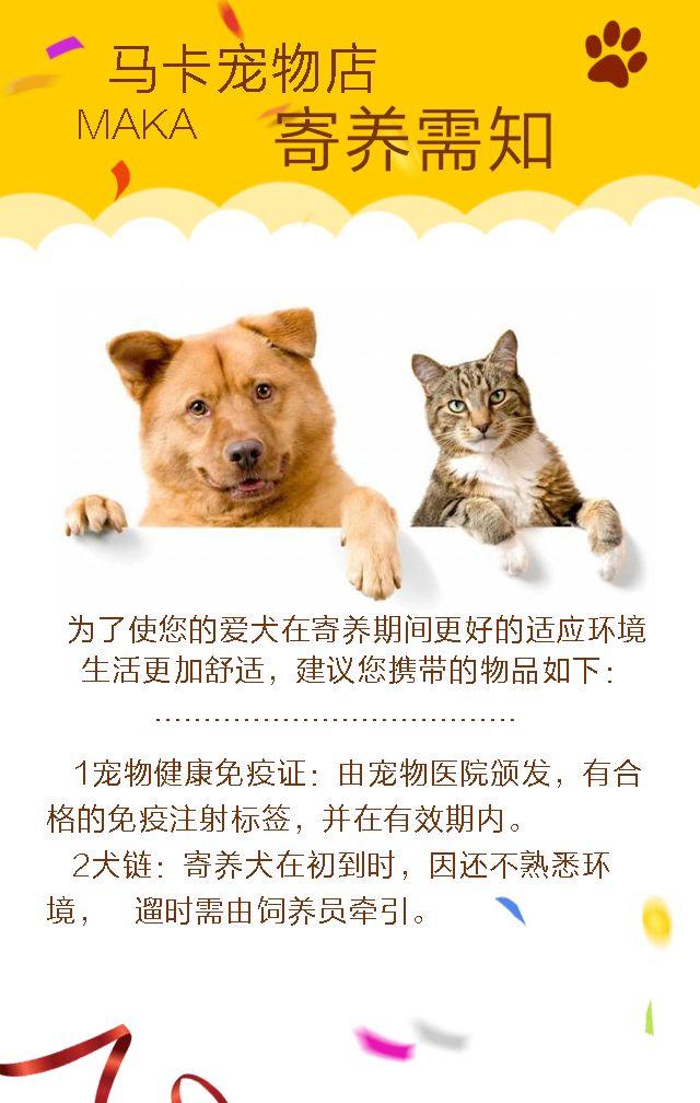 宠物店开业促销