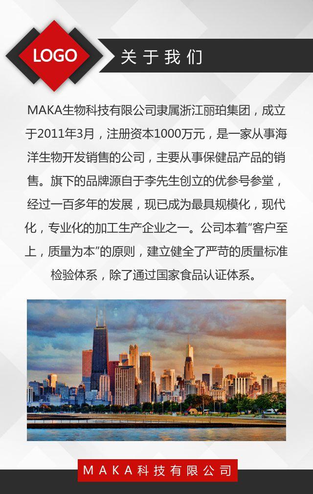 简约商务红色企业宣传册公司招商手册产品画册H5