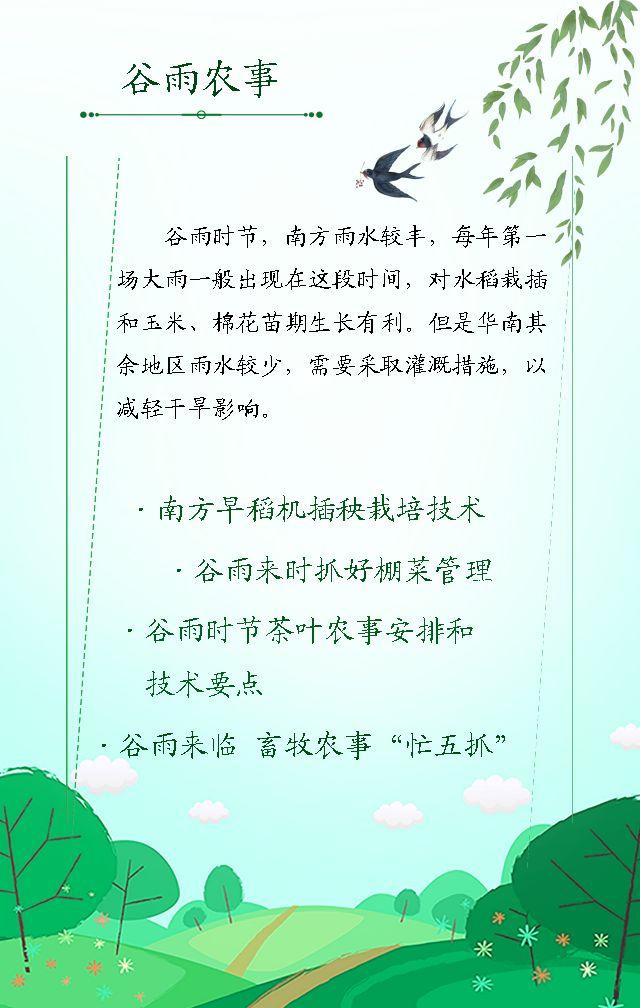 谷雨  简约大气公益宣传