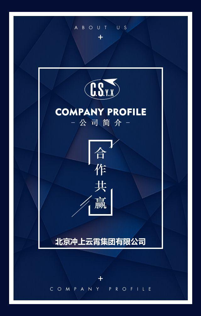 高端大气公司简介企业宣传品牌推广