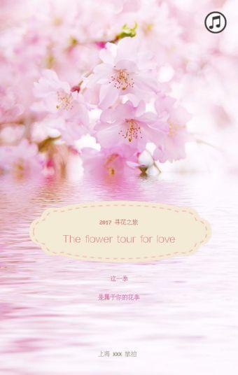 2017寻花之旅—这一季是属于你的花季……