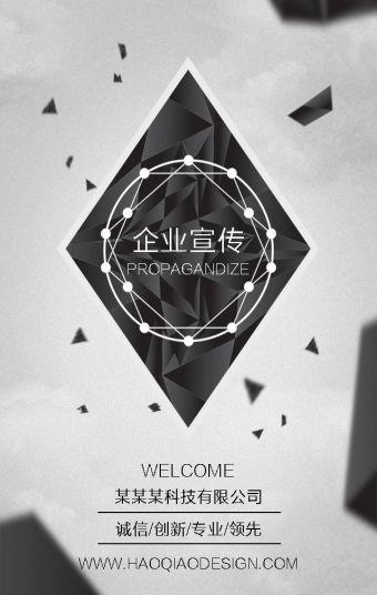 黑白灰企业介绍/宣传