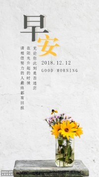 向日葵早晚安/心灵鸡汤/小清新日签/花瓶