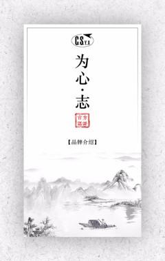 中国风公司集团介绍品牌介绍推广