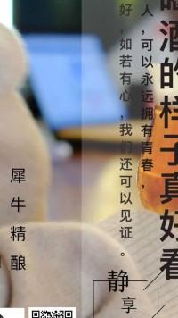 精酿啤酒宣传海报
