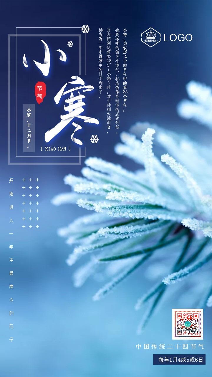 简约大气小寒节气日签二十四节气励志企业宣传手机海报