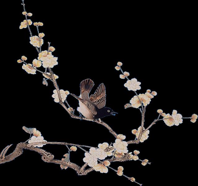 【邀请函】中国风手绘花鸟古风邀请函,适用于论坛,企业会议,活动邀请