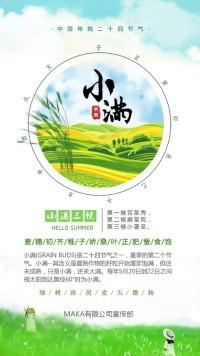 中国传统二十四节气-小满知识普及宣传海报