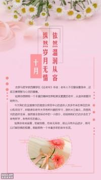 老年人/温馨粉色/菊花/文艺活动海报