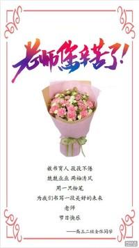 教师节感恩老师日签 海报 康乃馨 花束 节日快乐 班级 9月10日