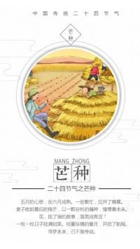 中国传统二十四节气-芒种