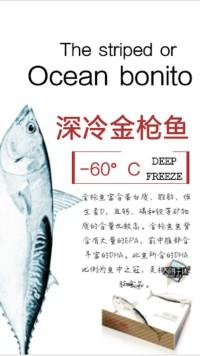 深冷金枪鱼介绍食品推广宣传简约大气