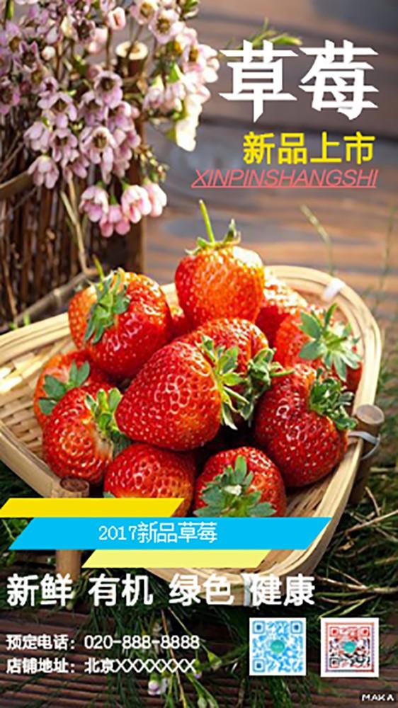 新鲜草莓上市