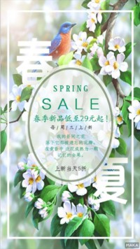 春夏新品促销优惠宣传文艺风格