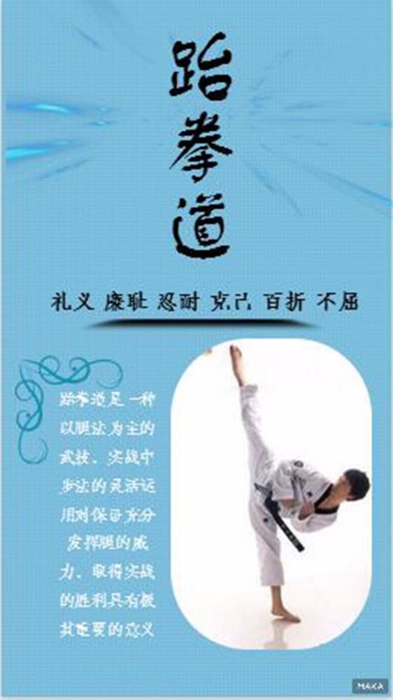 跆拳道宣传蓝色调简约清新风格