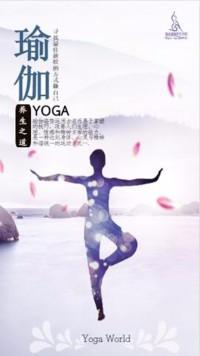 瑜伽,养生之道,健身房瑜伽馆宣传