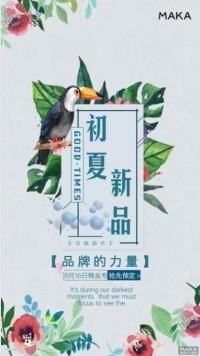 小清新初夏发布会海报