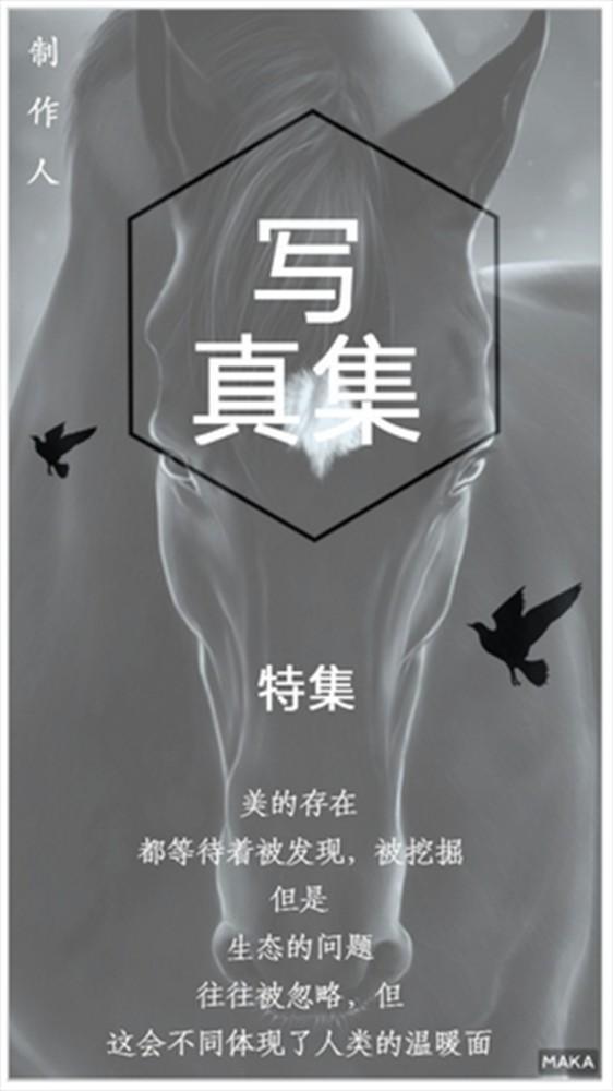 生态·写真海报