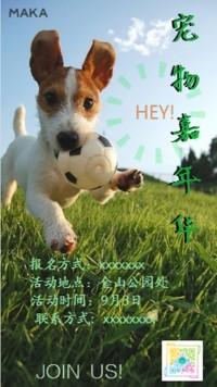 宠物嘉年华活动宣传海报