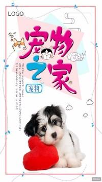 宠物之家宠物店宣传