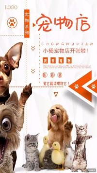 宠物店开张宣传海报橙色