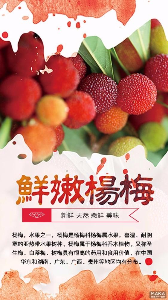 鲜嫩杨梅 简约大气宣传海报