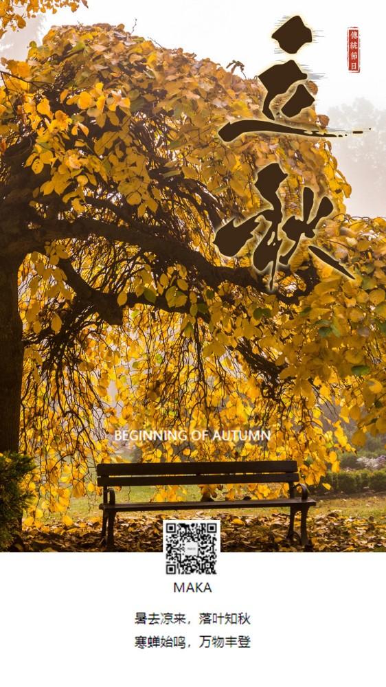 立秋二十四节气暑去凉来落叶知秋树