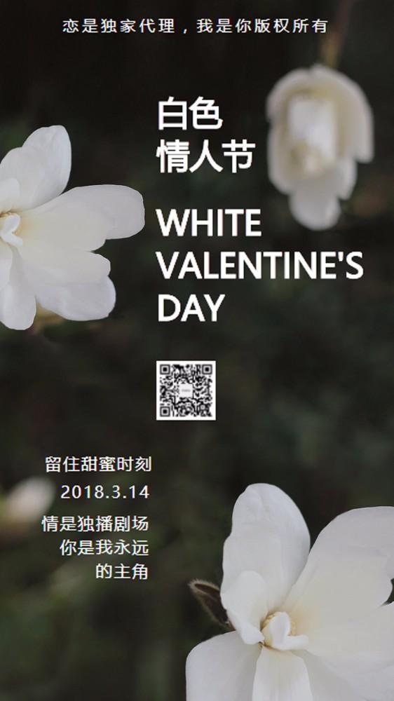 情人节白色情人节海报情人节优雅白绿色贺卡