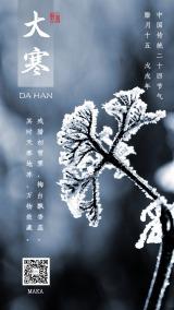 大寒节气寒气之逆极万物敛藏白蓝简约海报