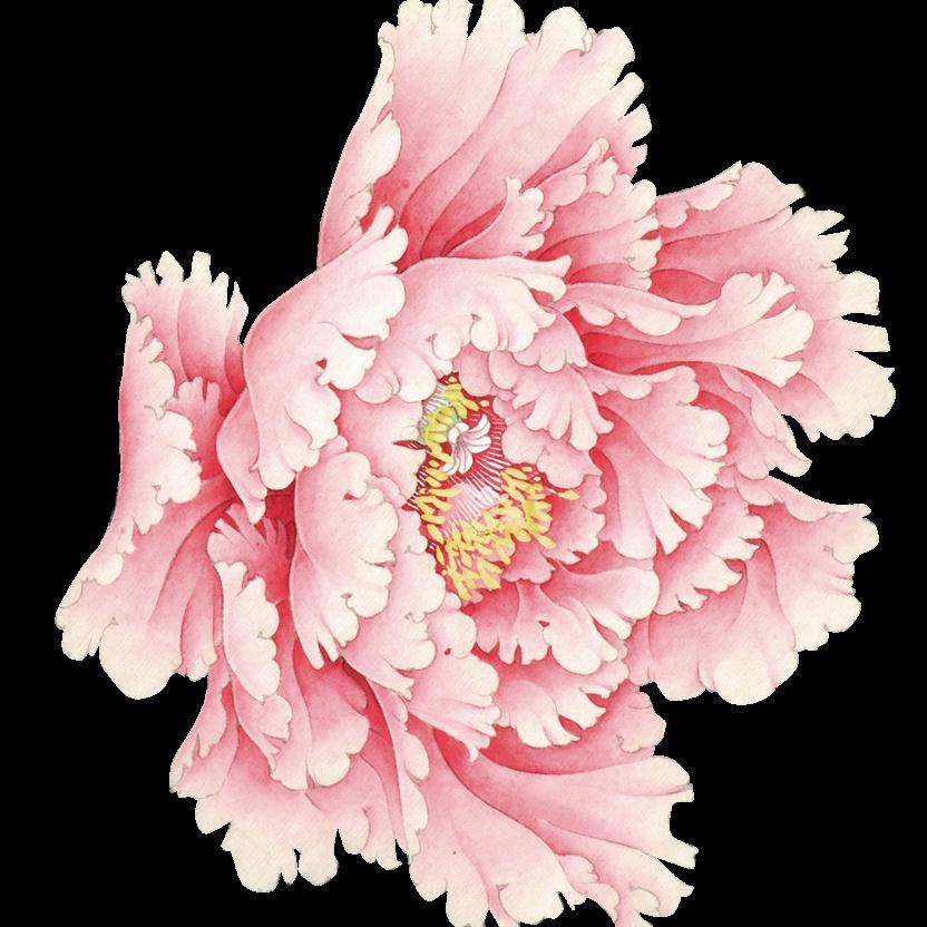 艺术花卉行业通用邀请函会议通知中国风手绘花卉肉色高端大气_微信h5