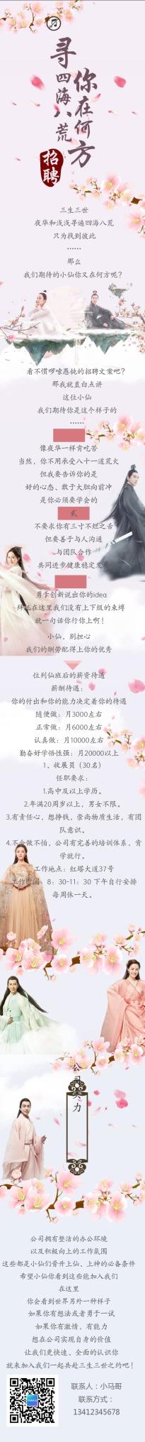 扁平简约粉蓝互联网企业社会招聘介绍推广单页