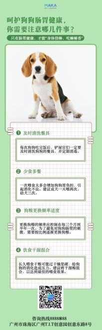 清新插画风宠物日常养护知识分享长单页