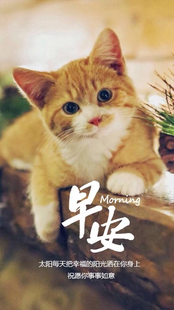 早安可爱动物图片带字