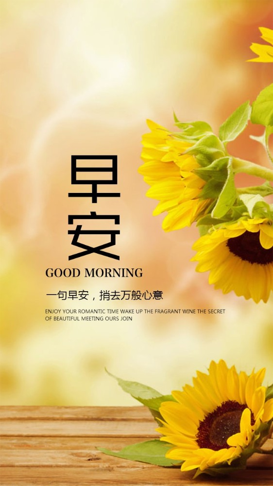 早安问候早安祝福唯美手机壁纸