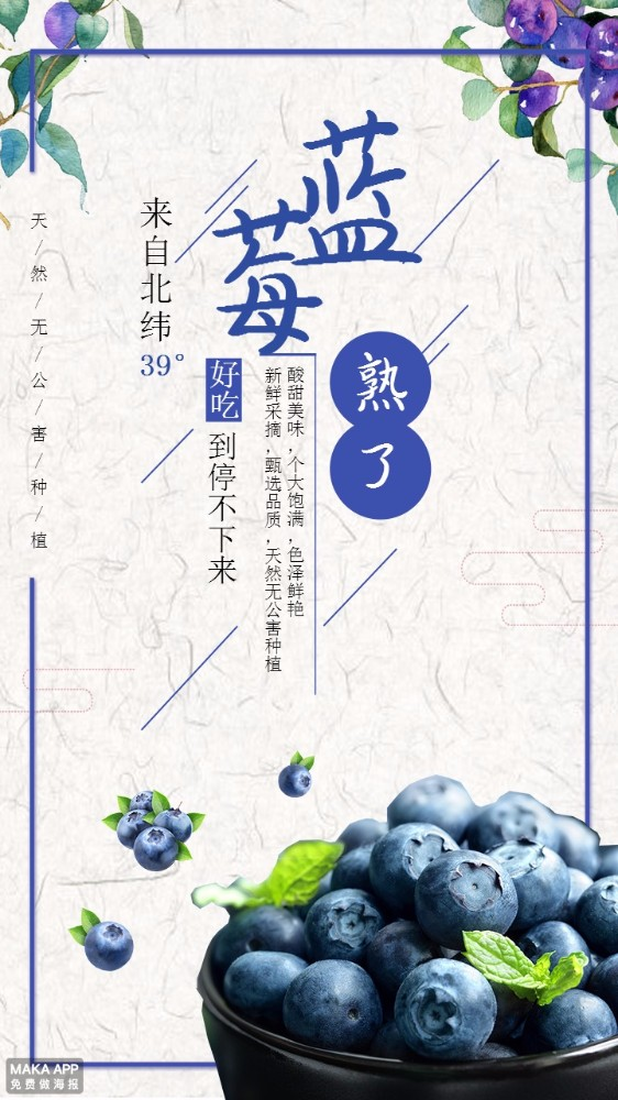日系清新蓝莓水果促销宣传海报