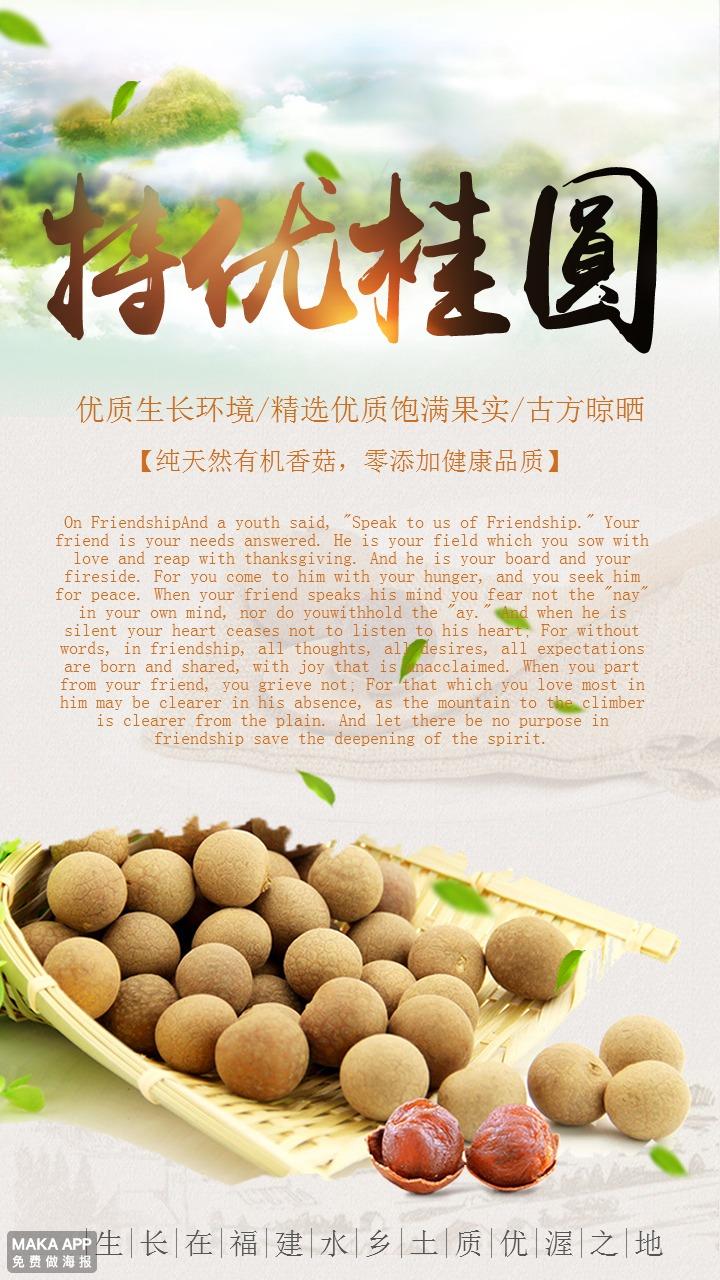 清新特优桂圆产品促销宣传海报