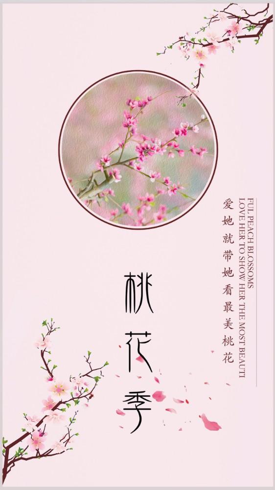 桃花节赏花季节粉色背景古风海报