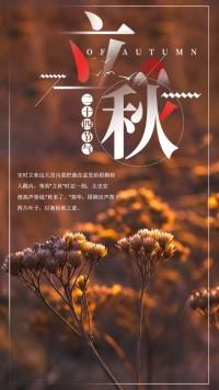 立秋习俗介绍节气二十四节气之立秋海报