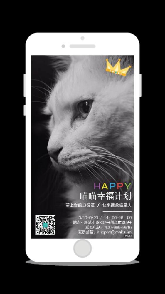 猫咪收养/义卖/宠物公益活动海报