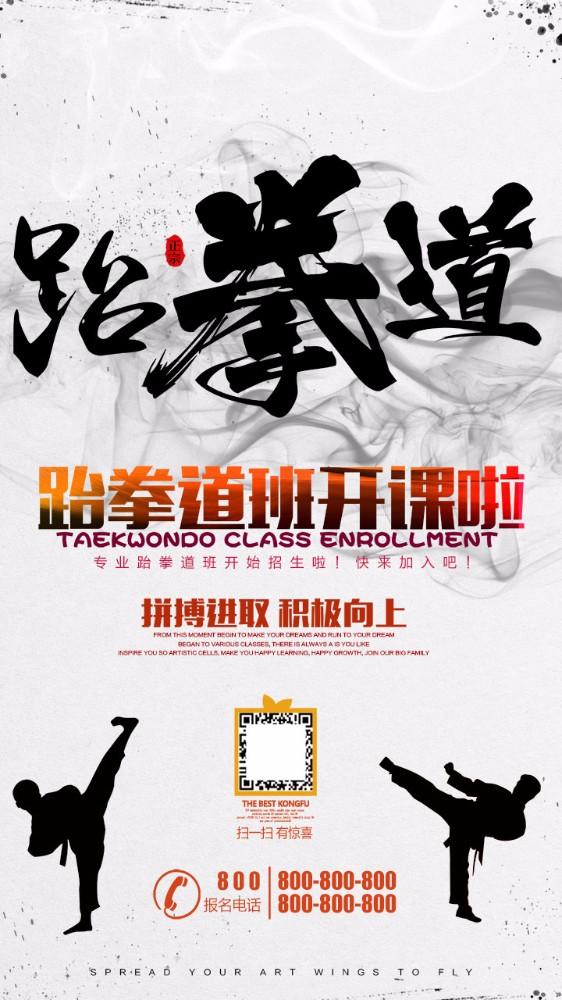 中国风水墨跆拳道招生海报