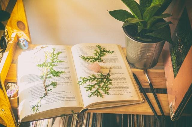 书签设计知识分享 书签的历史你知道多少