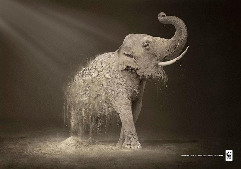公益海报设计图片欣赏 你从中看懂了什么