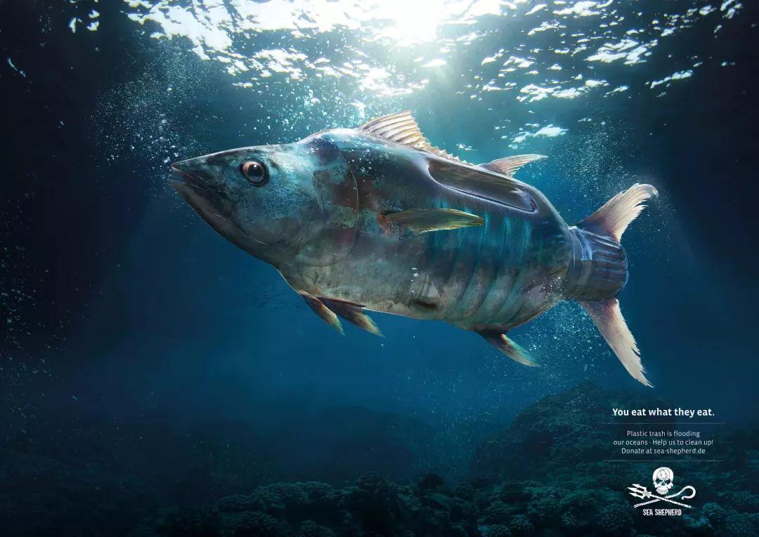 海报设计模板图片欣赏 如何让宣传变得巧妙