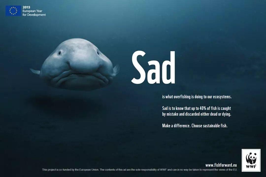 公益海报设计案例赏析 海洋保护宣传海报怎么做